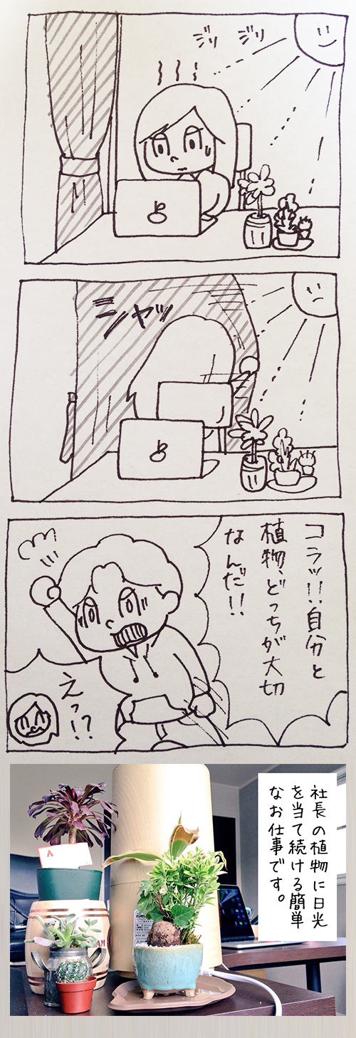 shokubutu
